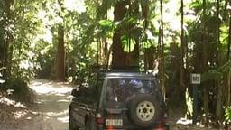 Fraser Island - World Heritage Area in Queensland