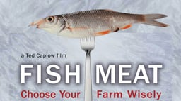 Fishmeat - Choose Your Farm Wisely