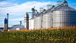 Biofuels - Biodiesel and Ethanol