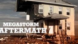 Megastorm Aftermath