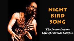 Night Bird Song - The Incandescent Life of Musician Thomas Chapin