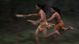 Sacred Stick - A History of Lacrosse and Native Americans