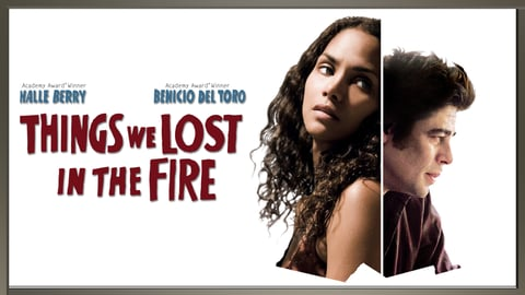 Things We Lost In The Fire cover image