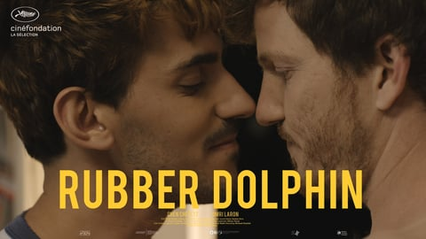 Rubber Dolphin cover image