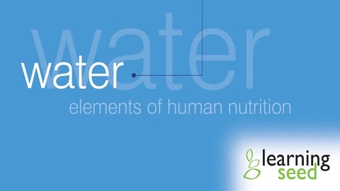 Preview image of Elements Of Human Nutrition: Water