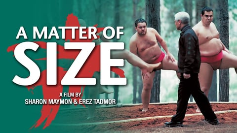 A Matter of Size cover image