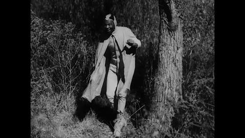 Pioneers in African-American Cinema