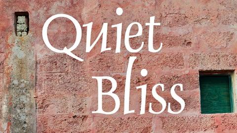 Quiet Bliss