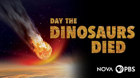 NOVA: Day the Dinosaurs Died cover image