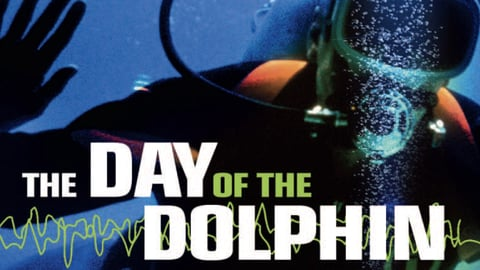 The Day of the Dolphin cover image