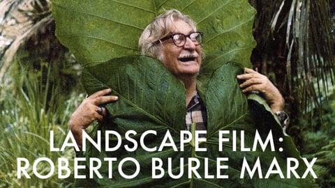Landscape Film