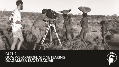 Gum Preparation - Stone Flaking - Djagamara Leaves Badjar cover image