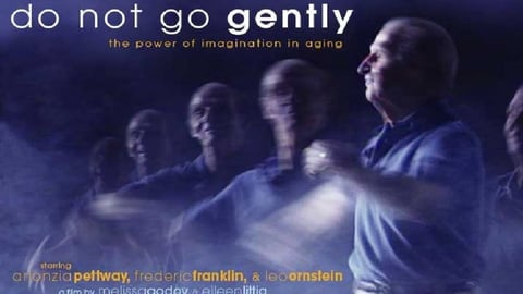 Preview image of Do Not Go Gently - Celebrating Elder Artists