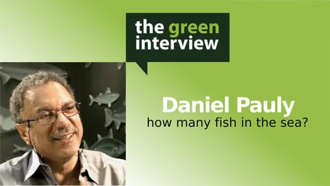 Preview image of How Many Fish in the Sea?: Daniel Pauly