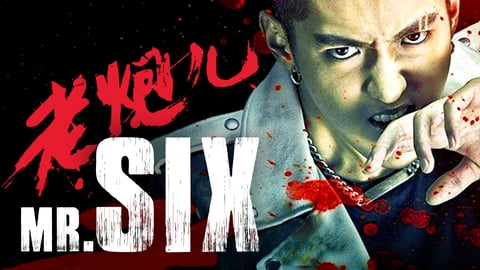 Mr. Six cover image