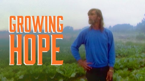 Growing Hope: The Homeless Garden Project