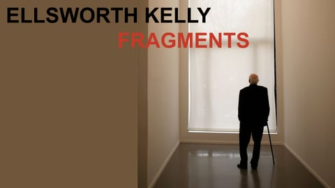 Preview image of Ellsworth Kelly: Fragments