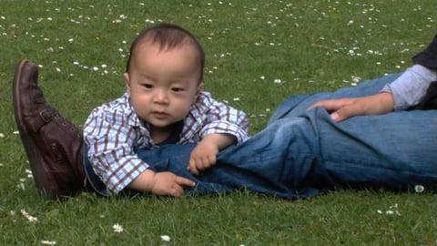 Babies Outdoors