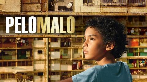 Bad Hair - Pelo Malo