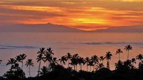 Native Planet Program 4: Hawaii - The Stolen Nation