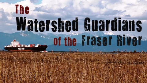The Watershed Guardians