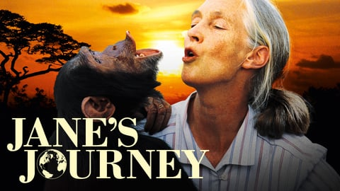 Preview image of Jane's Journey