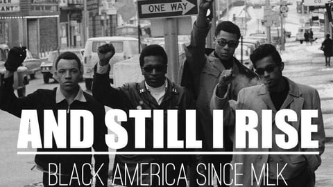 Black America since MLK : and still I rise Out of the shadows cover image