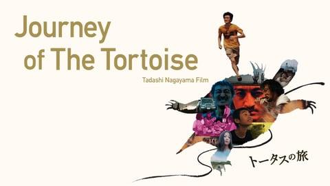 Journey of the Tortoise