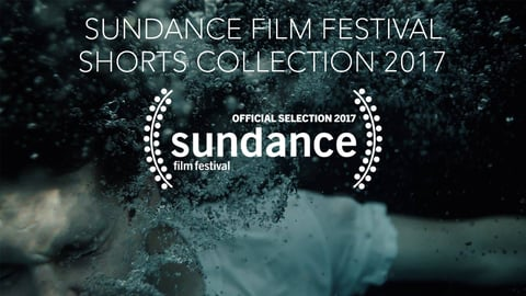 Preview image of Sundance Film Festival Shorts Collection 2017