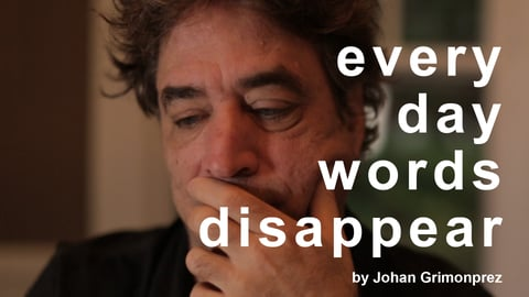 Every Day Words Disappear
