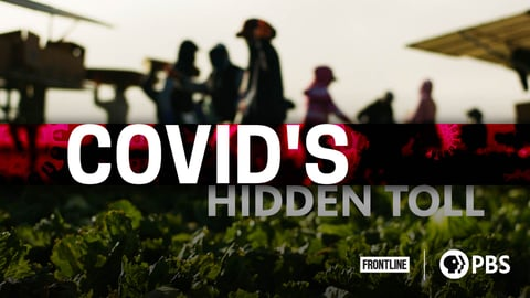 COVID's Hidden Toll