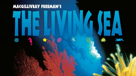 The Living Sea