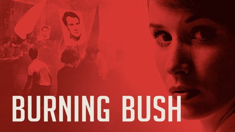 Burning Bush cover image