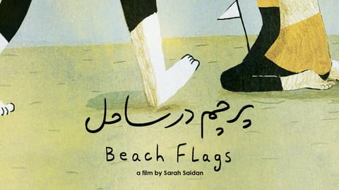 Beach Flags cover image