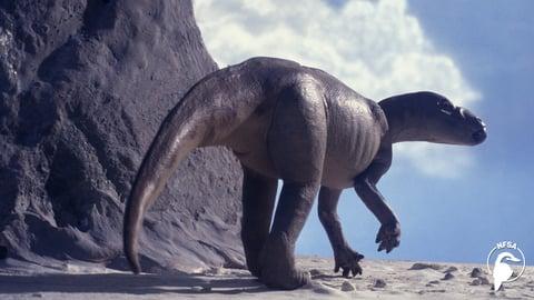 Muttaburrasaurus - Life in Gondwana
