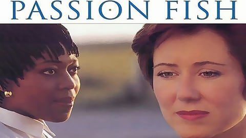 Passion Fish cover image