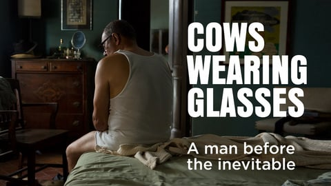 Preview image of Cows Wearing Glasses