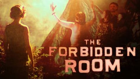 Preview image of The Forbidden Room