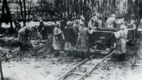 Where Birds Never Sang: The Ravensbrueck Concentration Camp