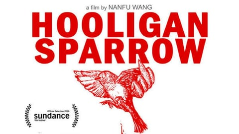 Hooligan sparrow cover image