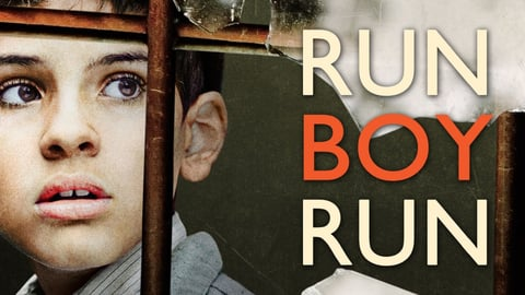 Run Boy Run cover image