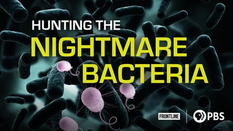 Preview image of Frontline - Hunting the Nightmare Bacteria