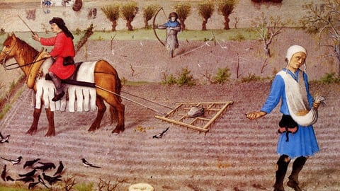 The Economics of the Black Death