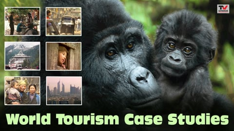 Preview image of World Tourism Case Studies