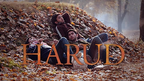 Harud cover image