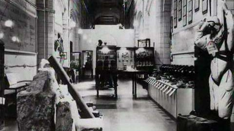 Preview image of Museum Secrets: Inside The National History Museum