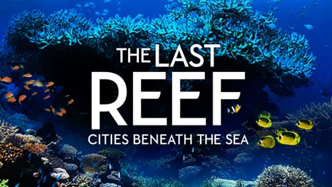 The Last Reef cover image