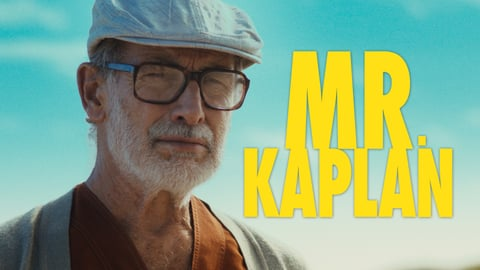 Mr. Kaplan cover image