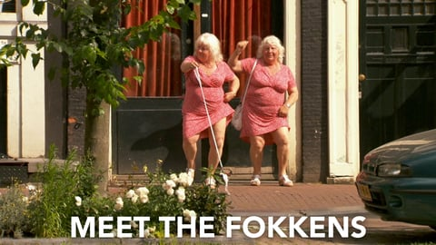 Preview image of Meet the Fokkens