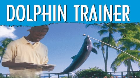 Preview image of Tell Me How Career Series: Dolphin Trainer